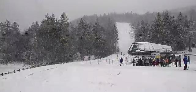 snowshoe3515