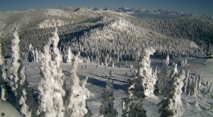 north summit skiers at whitefish resort montana
